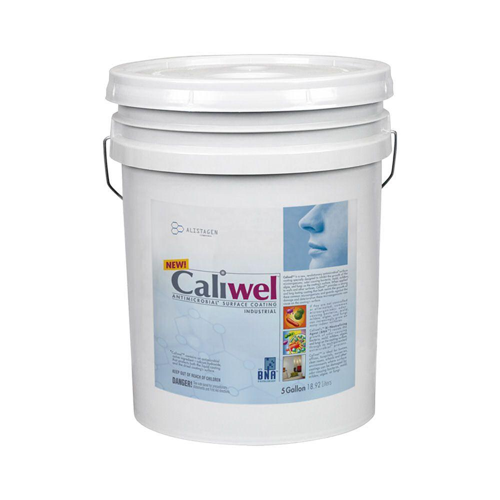 5 gal. Opaque Antimicrobial and Anti-Mold Coating for Behind Walls and Basements